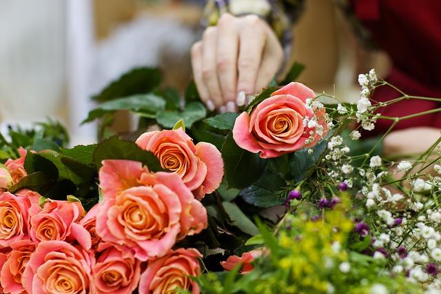 hodně růží